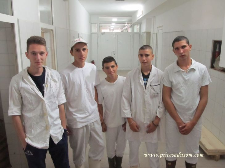 Mlekarska skola Pirot 4