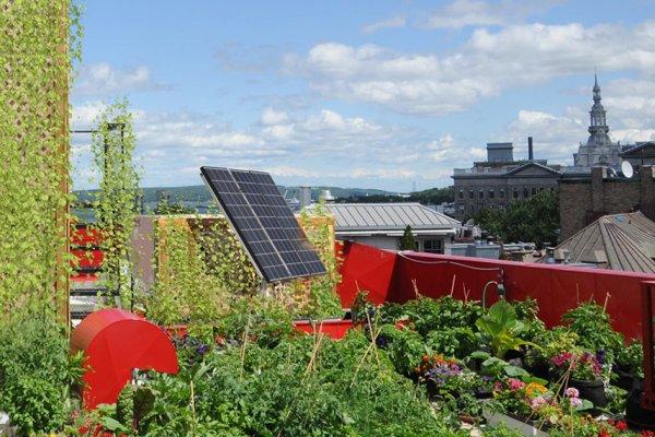 Hotel_solar_panels-855
