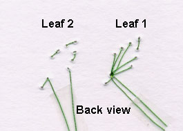 loop stitch leaf back