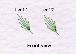 loop stitch leaf front