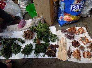 Tianguis (indigenous market) - medicinal herbs