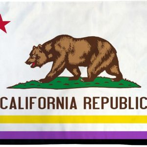 California Non-Binary Flag