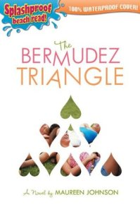 The Bermudez Triangle cover