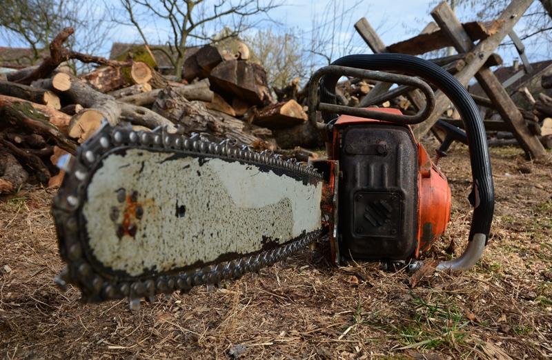 STRAŠNA TRAGEDIJA Rušio stablo johe i na mjestu poginuo