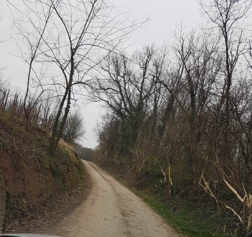 Zamjenik križevačkog gradonačelnika izrazio nezadovoljstvo stavom predsjednika Mjesnog odbora Gornji Dubovec, fotografijama i izlijetanjem s ceste