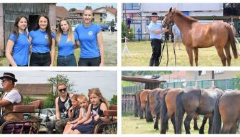 [FOTO/VIDEO] Tradicionalna revija konja održana u Vrbovcu