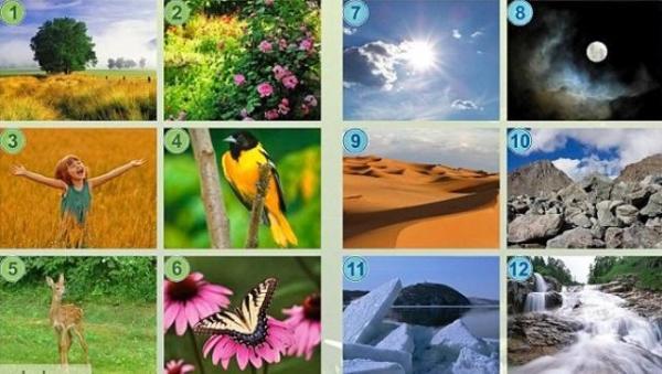 Картинки неживой природы (36 картинок)   Приколист
