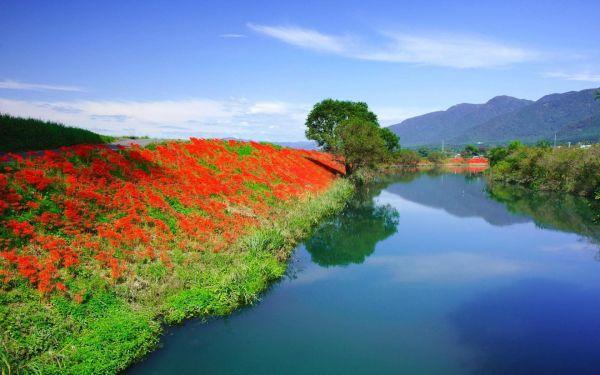 Фото на рабочий стол весна природа » Скачать лучшие ...
