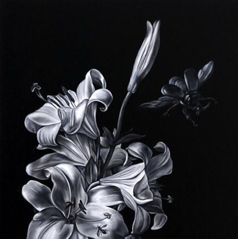 Картинки черно белые » Скачать лучшие картинки бесплатно ...