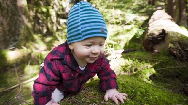 Ein Kind das im Wald krabbelt.