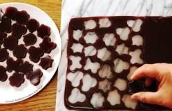 Healthy Fruit Gelatin Gummy Snacks