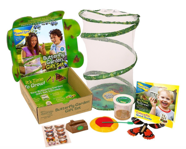 Insect Lore Live Butterfly Growing Kit Gift Box Set - 5 Caterpillars to Butterflies with Feeder Butterfly
