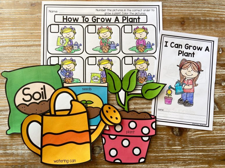 How To Grow A Plant