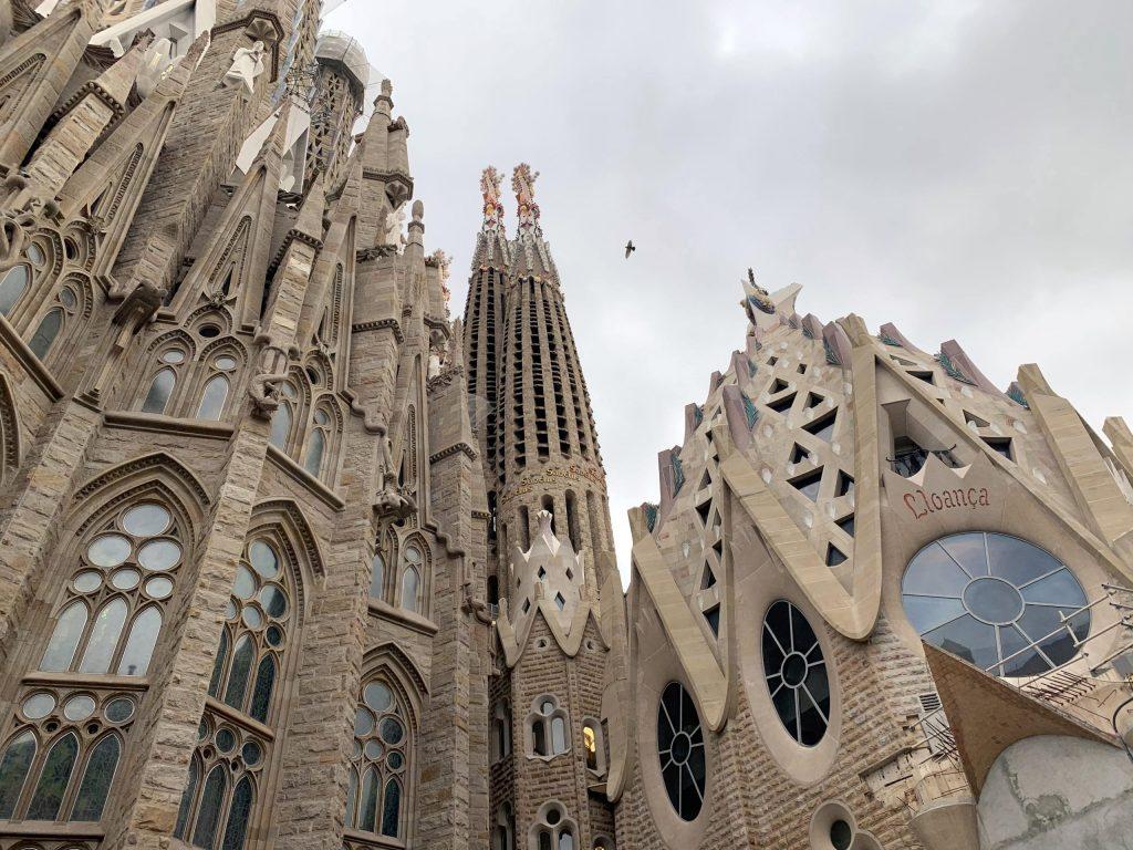 Bird flying in between spires of La Sagrada Familia