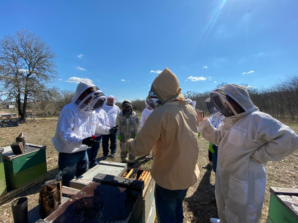 prime bees hive tour