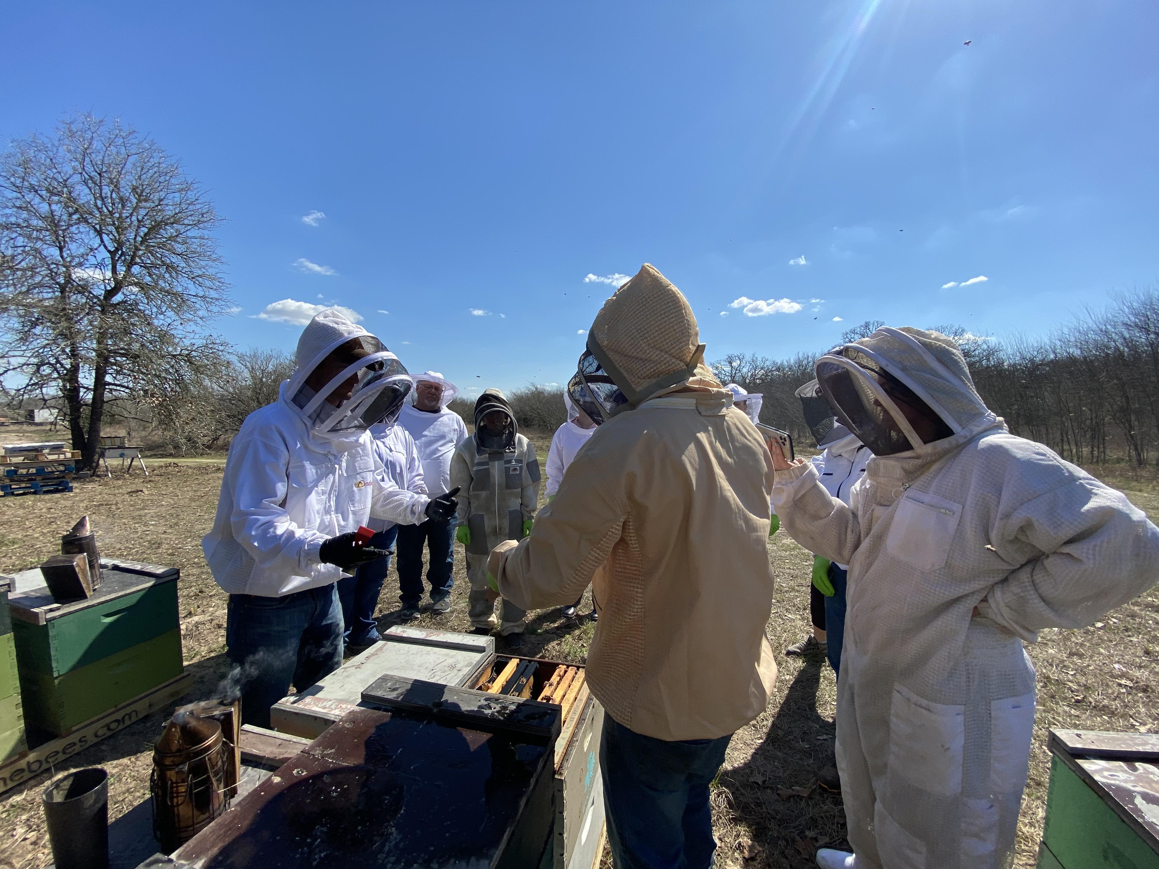 prime bees hive tour