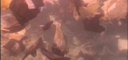 PriMed 2013 - Méditerranée, une soupe de plastique