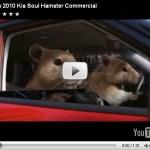 Hamters estrelam em propaganda do kia soul nos EUA