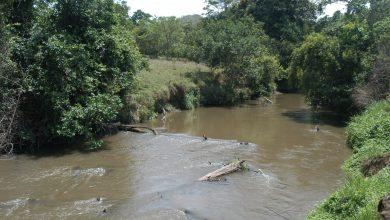 Photo of Preservação do São Bartolomeu em pauta na Tribuna Livre