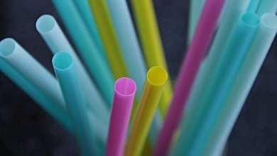 Photo of Projeto de Lei proíbe fornecimento de canudos plásticos em estabelecimentos em Viçosa