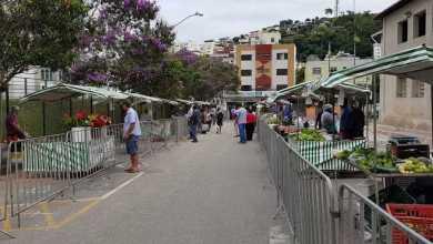 Foto de Feira Livre do fim de semana volta a ser realizada no sábado