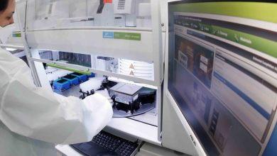 Foto de Governo adota Inteligência Artificial na classificação de tumores