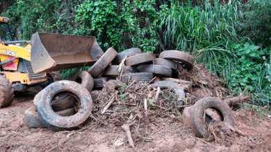 Foto de Córregos de Viçosa são entupidos com lixo após fortes chuvas