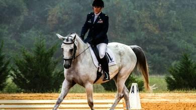 Foto de Senar realiza curso de equitação em São Miguel do Anta
