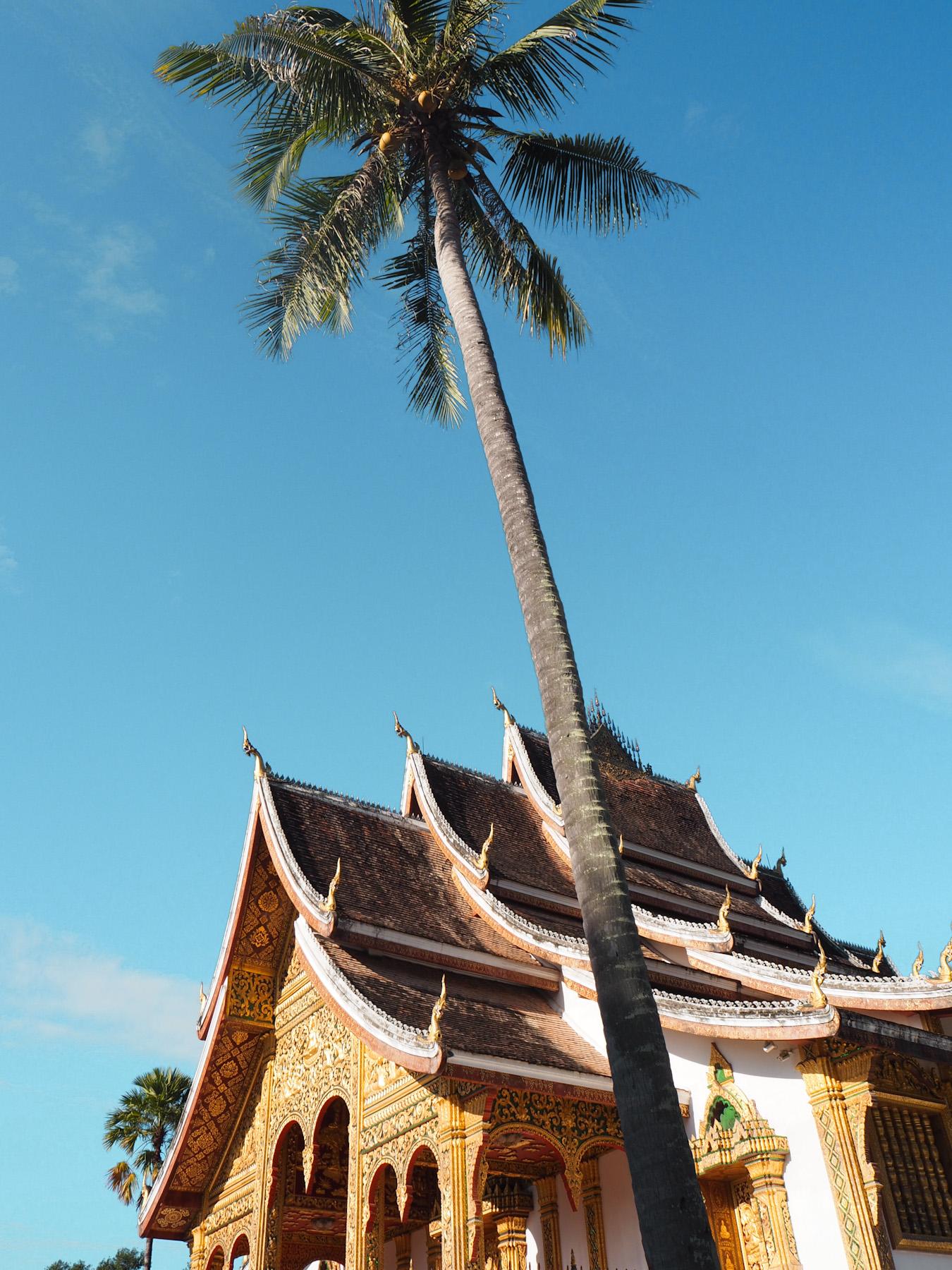 O que fazer em Luang Prabang - Templo Wat Xieng Thong