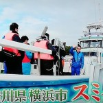 【満天青空レストラン】スミイカの伝統漁法とは?美味しい食べ方まとめ!