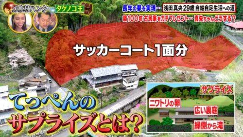 王 場所 タケノコ