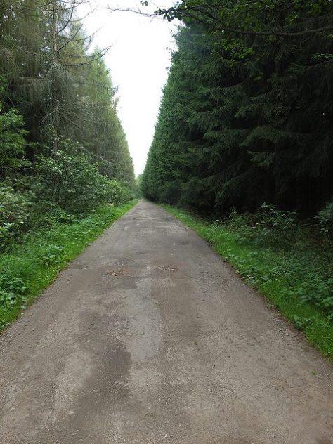 Czech Republic hiking