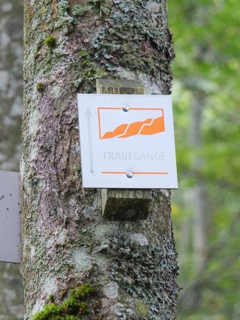 Albstadt Hike
