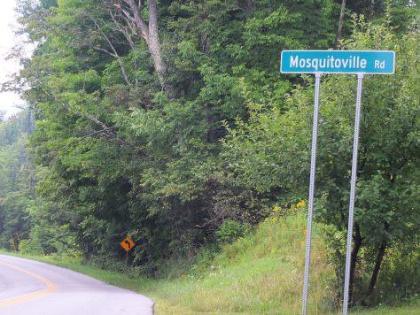 mosquitoville