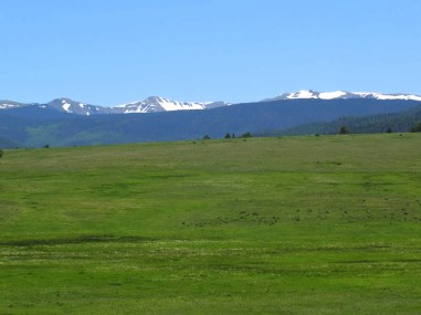 Wheeler Peak across the valley