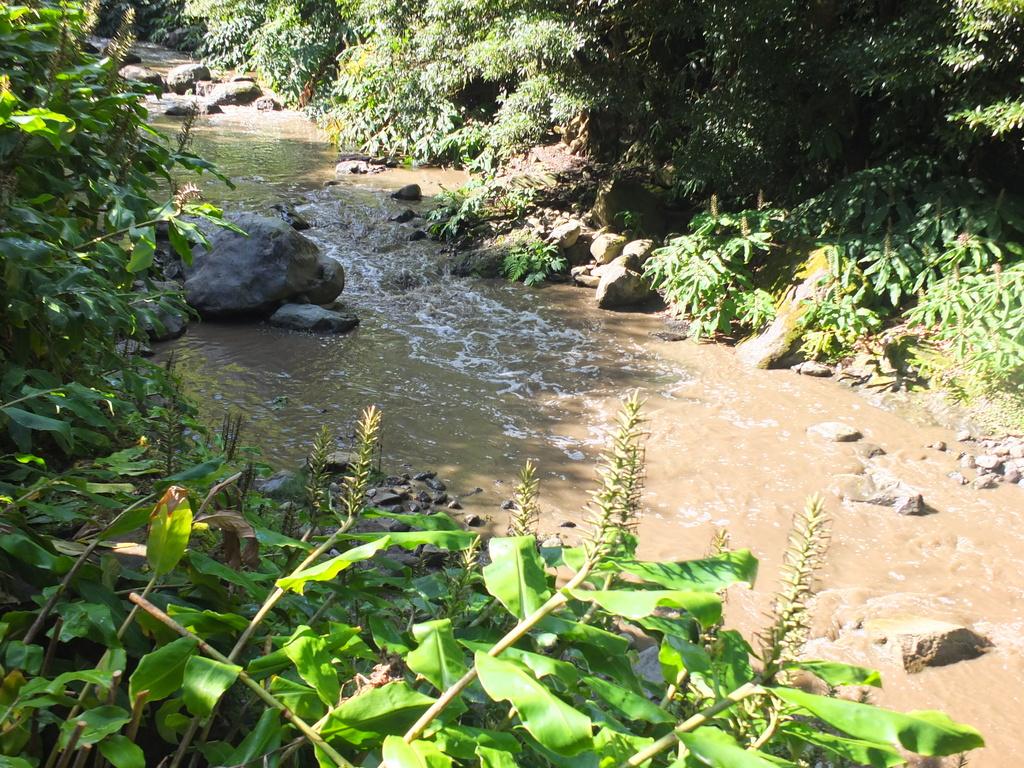 stream above Cascata do Salto do Cabrito