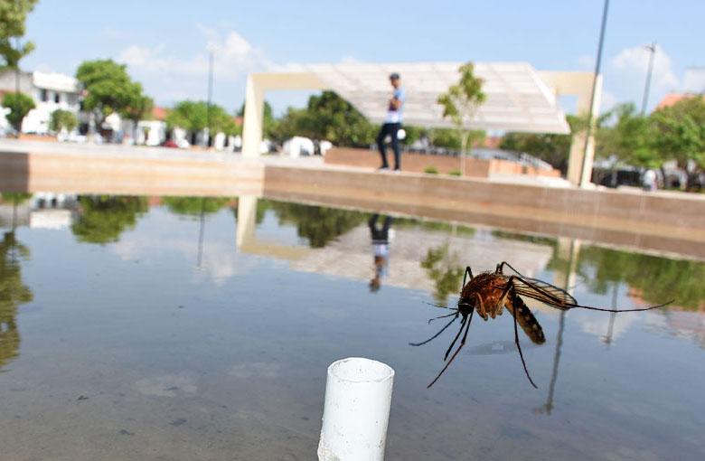 plaza-alfonso-lopez-mosquito