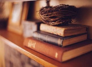 los-6-libros-que-tienes-que-leer-este-mes