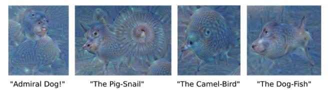 Estas imágenes fueron forzadas por el algoritmo, al pedirle que detecte animales en una imagen del cielo con nubes.
