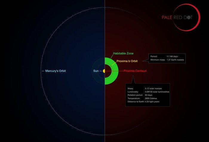 Comparación entre la órbita de Mercurio alrededor del Sol (izquierda) y la órbita de Próxima b alrededor de Próxima Centauri (derecha). Próxima b se ubica en la zona habitable de su estrella (zona verde), no así Mercurio. Imagen: M. Kornmesser/G. Coleman vía ESO.