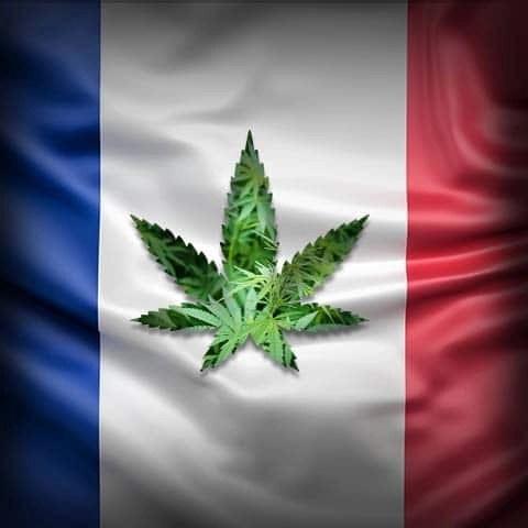 In Francia legalizzazione all'orizzonte?