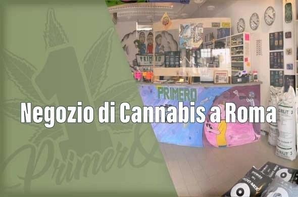 negozio-cannabis-a-roma
