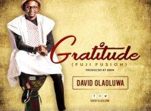 David Olaoluwa Gratitude