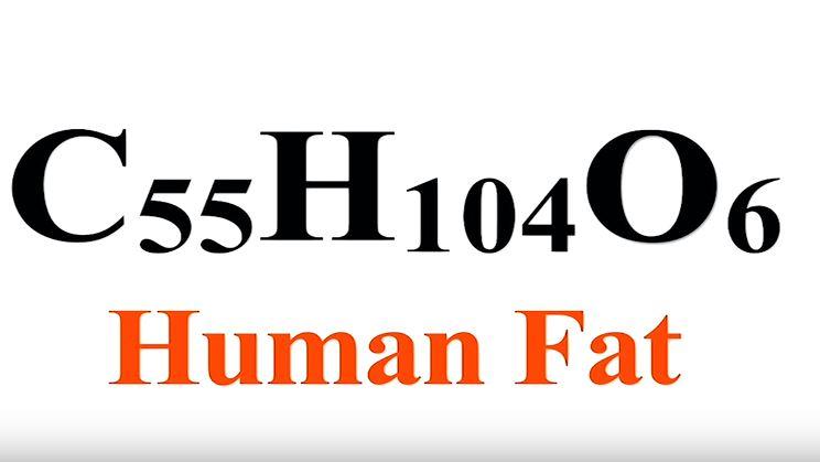 C55H104O6 Human Fat