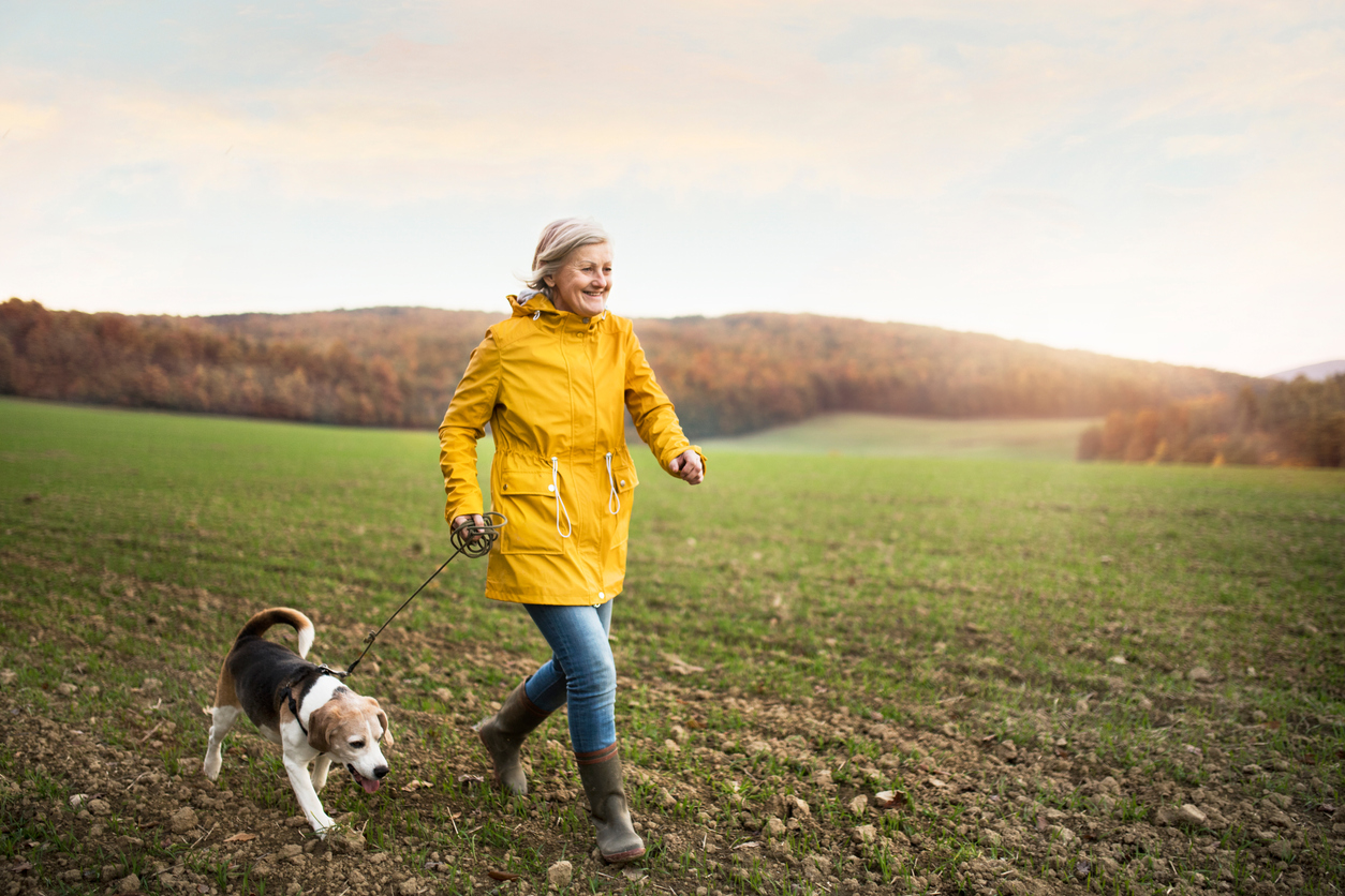 The Pros and Cons of Pets for Empty Nesters