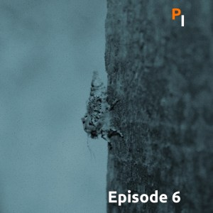 Primitive Intelligence Podcast Episode 6