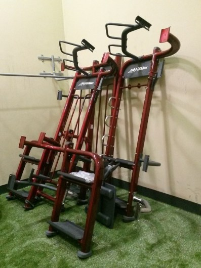 Life Fitness Synergy 360 2