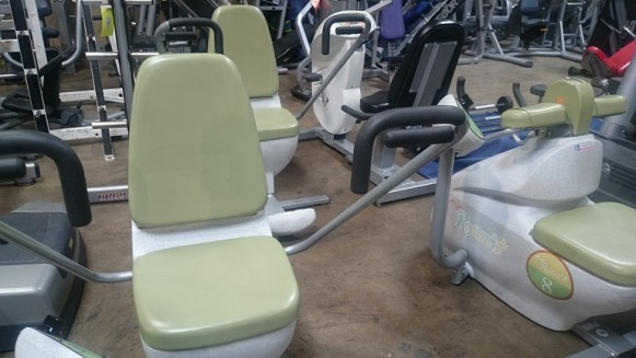 Hoggan Health Fitness Equipment 4