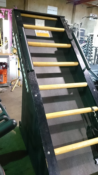 Jacob's Ladder Cardio Machine 6