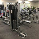 Life Fitness Fit Series Biceps Triceps
